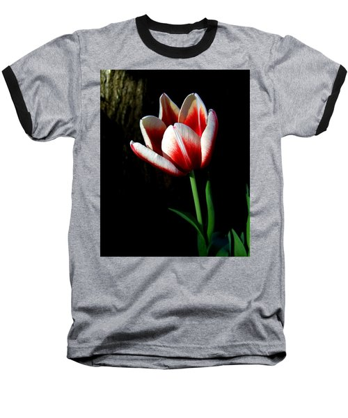 Candy Cane Tulip Baseball T-Shirt