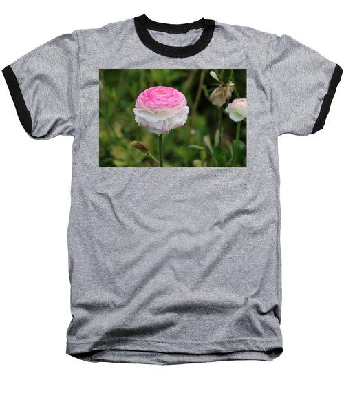 Candy Stripe Ranunculus Baseball T-Shirt