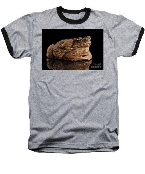 Cane Toad - Bufo Marinus, Giant Neotropical Or Marine Toad Isolated On Black Background Baseball T-Shirt