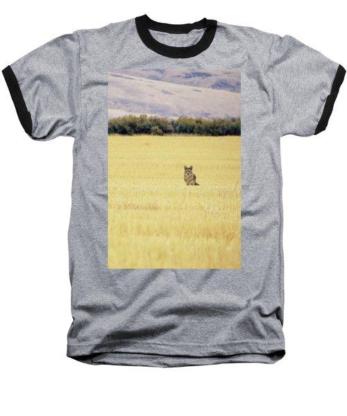 Canidae Baseball T-Shirt