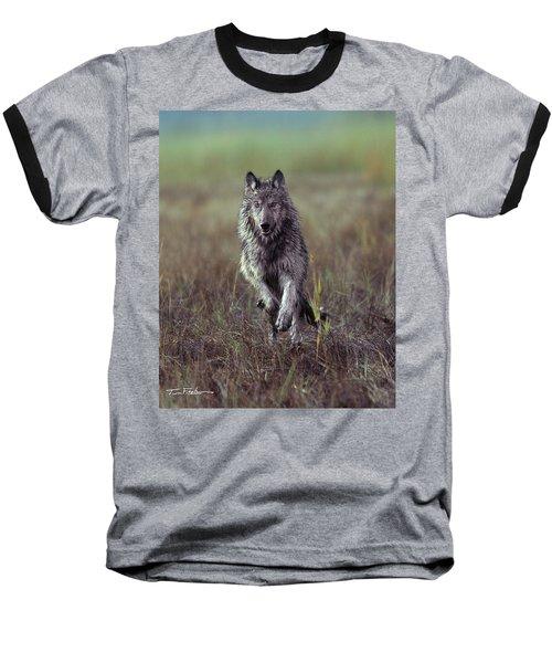 Canis Lupus Baseball T-Shirt by Tim Fitzharris