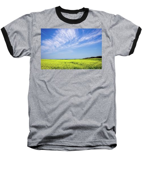 Canola Blue Baseball T-Shirt by Keith Armstrong