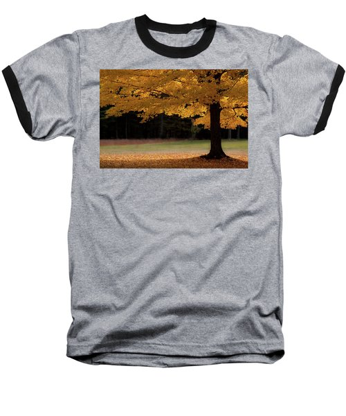 Canopy Of Autumn Gold Baseball T-Shirt