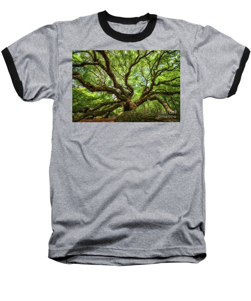 Canopy Of Color At Angel Oak Tree  Baseball T-Shirt by Michael Ver Sprill