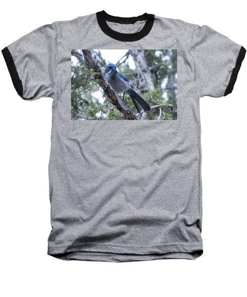 Canyon Jay Baseball T-Shirt