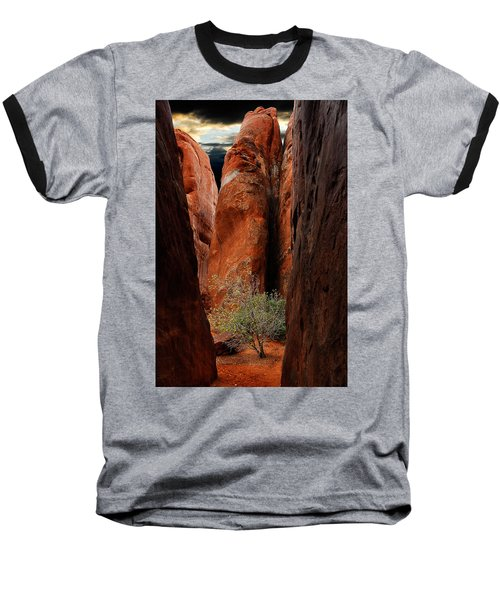 Canyon Tree Baseball T-Shirt