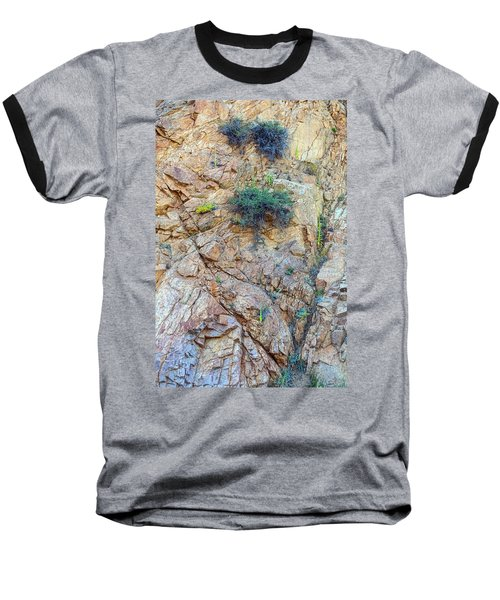 Baseball T-Shirt featuring the photograph Canyon Vegetation by James BO Insogna