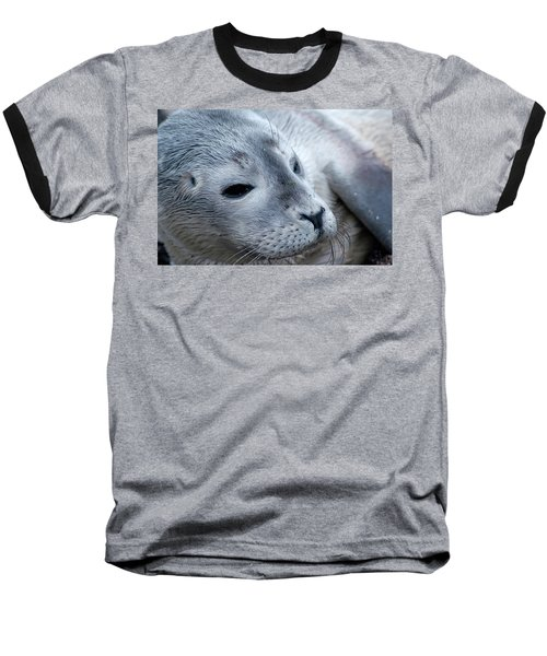 Baseball T-Shirt featuring the photograph Cape Ann Seal by Mike Martin