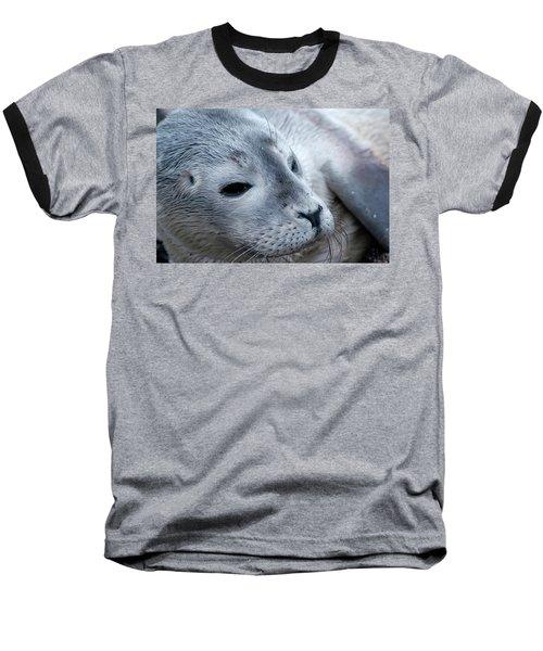 Cape Ann Seal Baseball T-Shirt