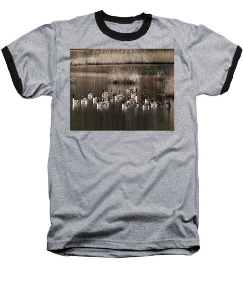 Cape Cod Americana Canada Geese Baseball T-Shirt by Constantine Gregory