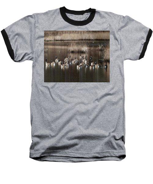 Cape Cod Americana Canada Geese Baseball T-Shirt
