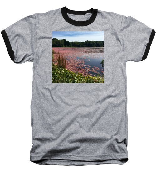 Cape Cod Cranberry Bog Baseball T-Shirt