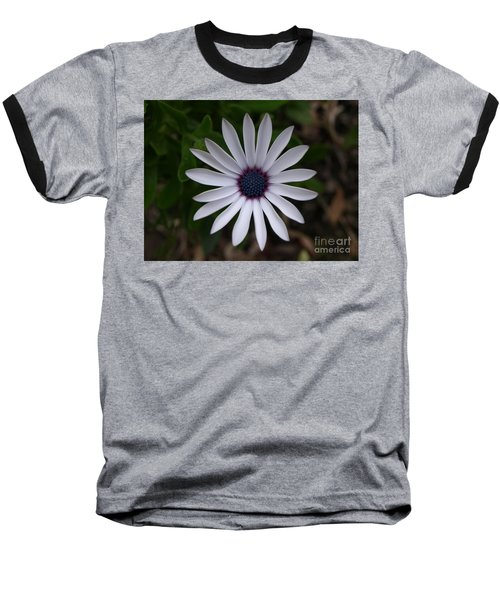Cape Daisy Baseball T-Shirt