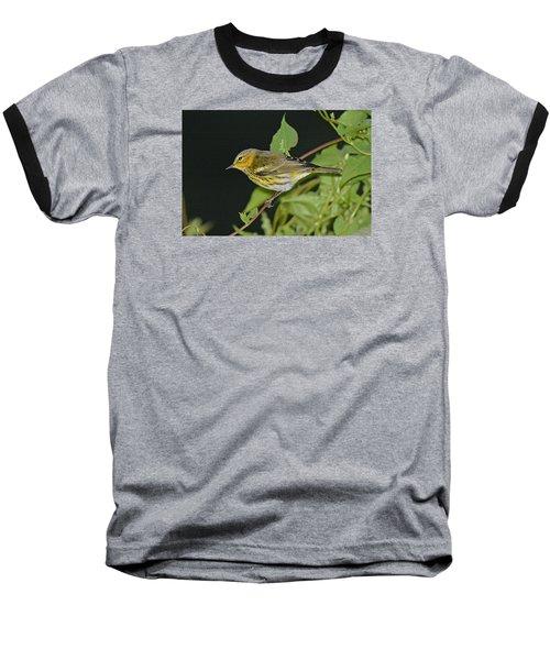 Cape May Warbler Baseball T-Shirt by Alan Lenk