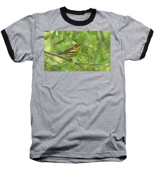 Cape May Warbler Baseball T-Shirt