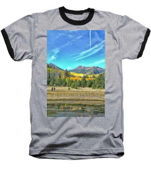 Captured Baseball T-Shirt by Tom Kelly