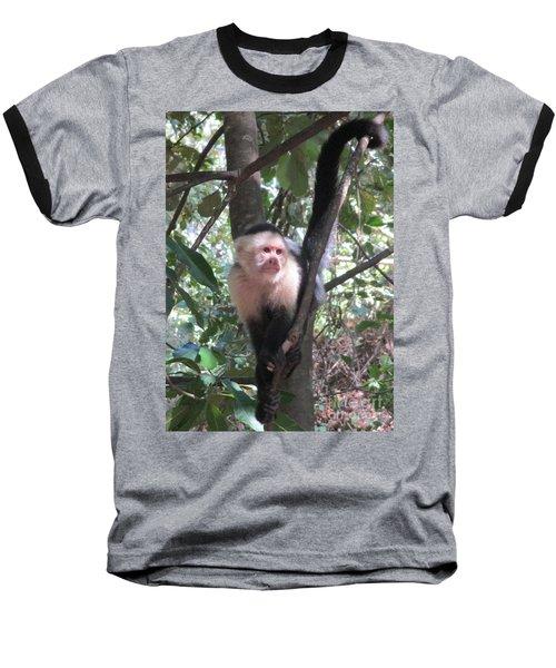 Capuchin Monkey 4 Baseball T-Shirt by Randall Weidner