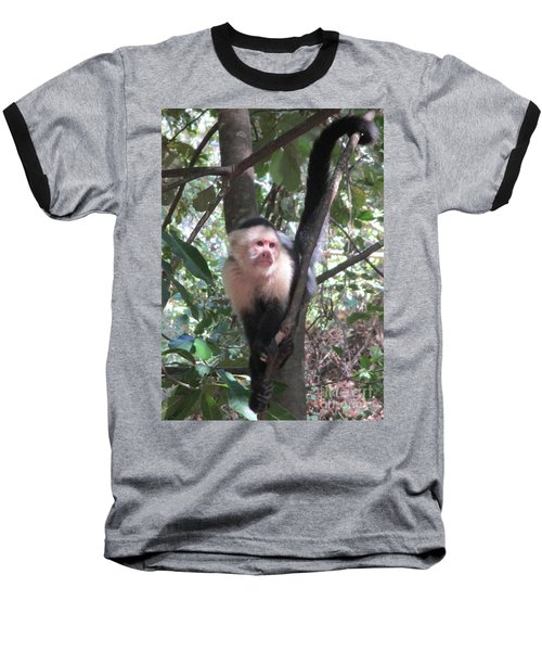 Capuchin Monkey 4 Baseball T-Shirt