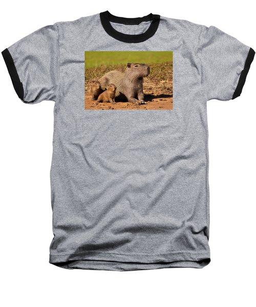 Capybara Family Enjoying Sunset Baseball T-Shirt by Aivar Mikko