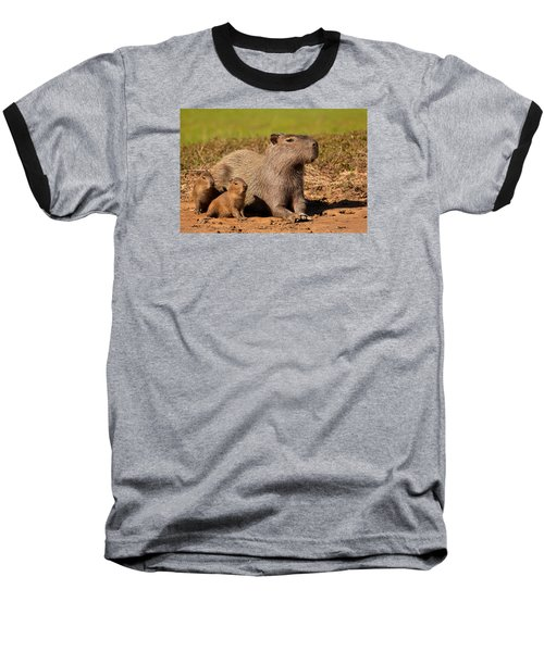 Capybara Family Enjoying Sunset Baseball T-Shirt