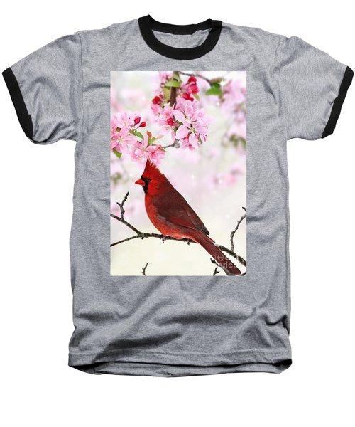 Cardinal Amid Spring Tree Blossoms Baseball T-Shirt by Stephanie Frey