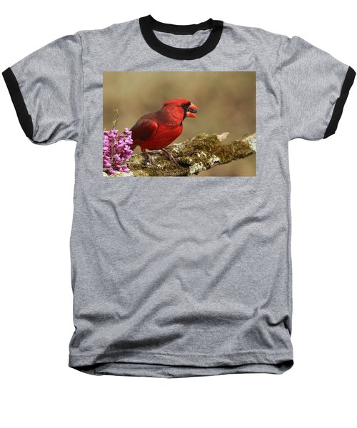 Cardinal In Spring Baseball T-Shirt