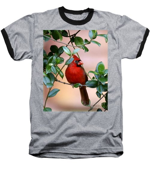 Cardinal In The Jasmine Baseball T-Shirt by Myrna Bradshaw