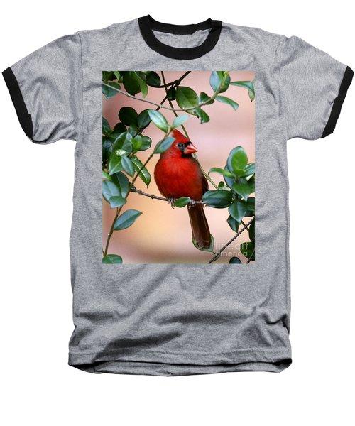 Cardinal In The Jasmine Baseball T-Shirt