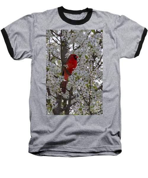 Baseball T-Shirt featuring the photograph Cardinal In White Blossoms by Barbara Bowen