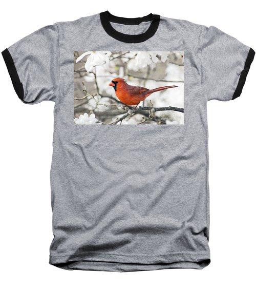 Baseball T-Shirt featuring the photograph Cardinal Spring - D009909-a by Daniel Dempster
