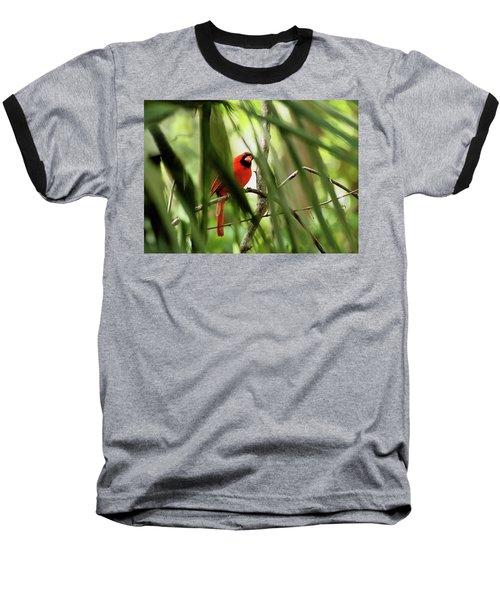 Cardinal Spy Baseball T-Shirt
