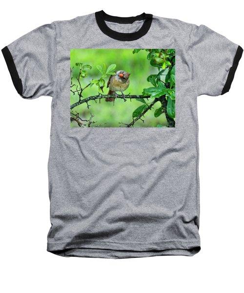 Cardinal Ways Baseball T-Shirt