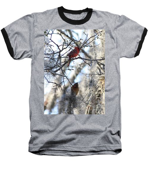 Cardinals In Mossy Tree Baseball T-Shirt by Carol Groenen