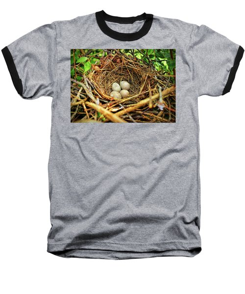 Brown Thrasher Nest And Eggs Baseball T-Shirt by Bellesouth Studio