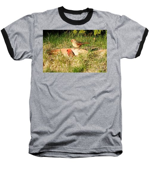 Baseball T-Shirt featuring the photograph Cardinals by Vicky Tarcau