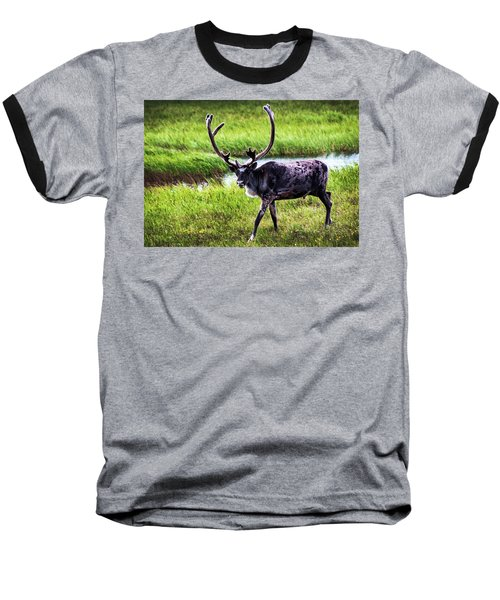 Baseball T-Shirt featuring the photograph Caribou by Anthony Jones