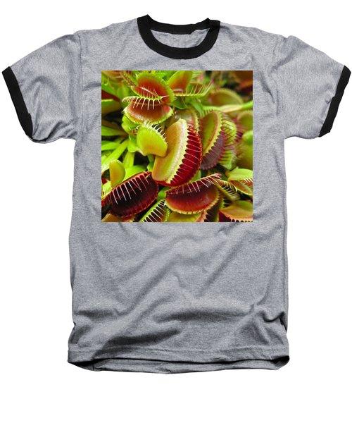 Carnivores Baseball T-Shirt