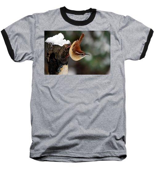 Carolina At The Suet Post Baseball T-Shirt by Skip Willits