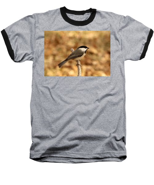 Carolina Chickadee On Branch Baseball T-Shirt