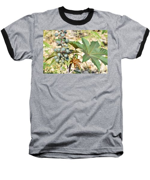 Baseball T-Shirt featuring the photograph Castor Oil Plant by Ray Shrewsberry