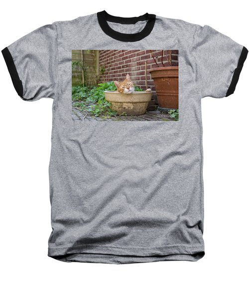 Baseball T-Shirt featuring the photograph Cat In Empty Pot by Patricia Hofmeester