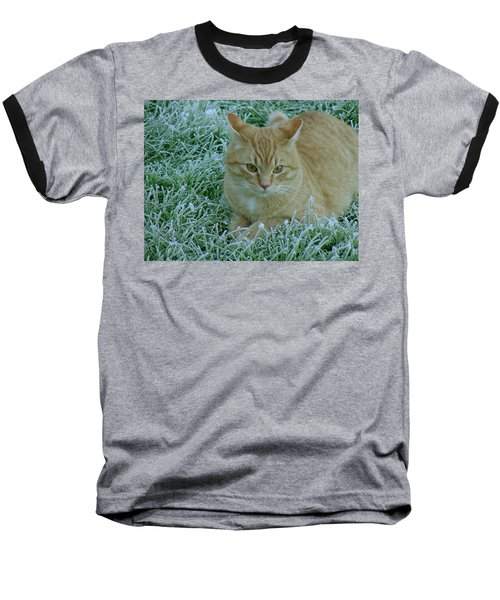 Cat In Frosty Grass Baseball T-Shirt