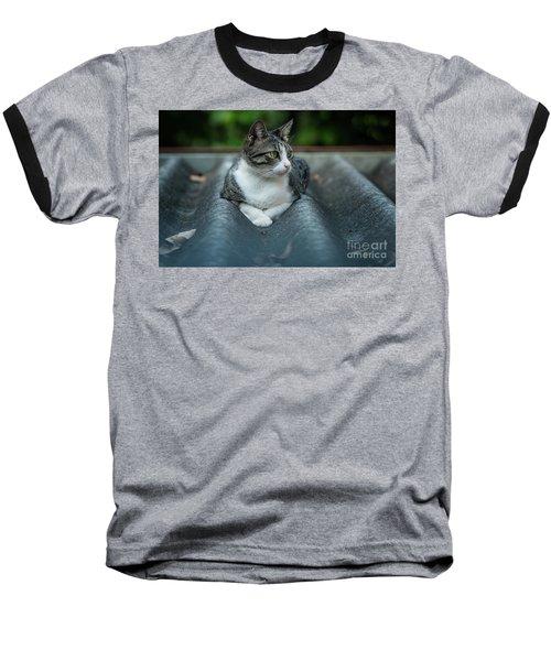 Cat In The Cradle Baseball T-Shirt