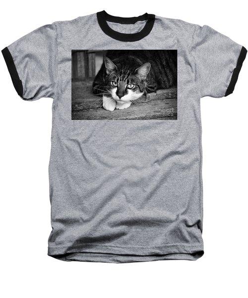 Cat Naps 2 Baseball T-Shirt