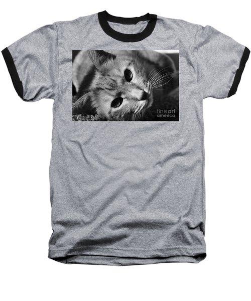 Cat Naps Baseball T-Shirt