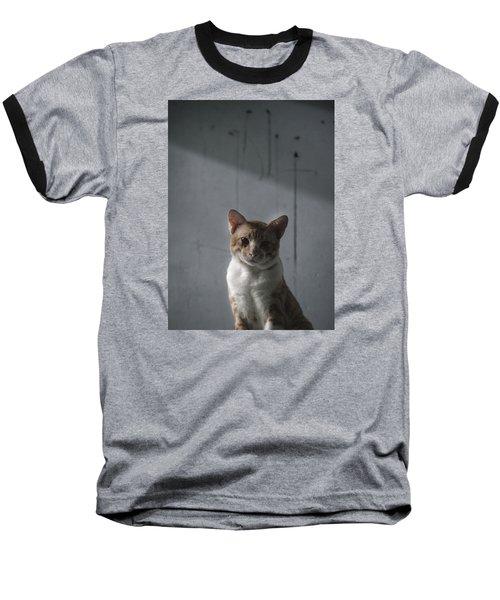 cat Baseball T-Shirt