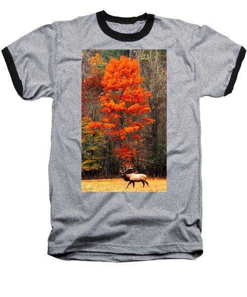 Cataloochee Color Baseball T-Shirt