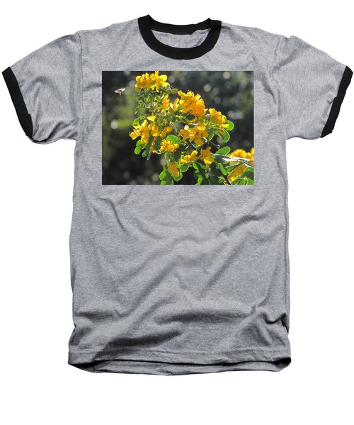 Catchlight Bee Over Yellow Blooms Baseball T-Shirt