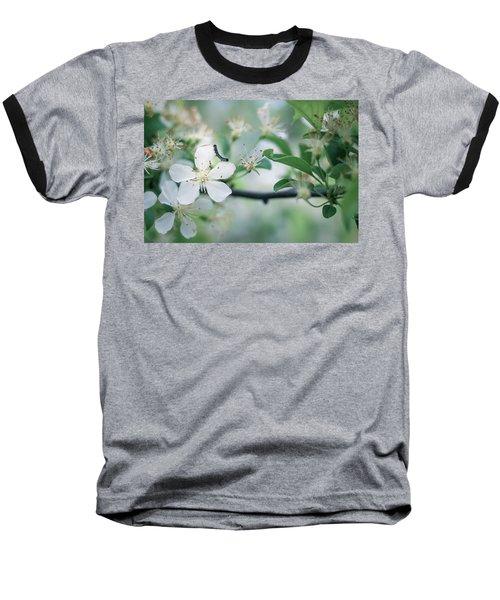 Caterpillar On A Tree Blossom Baseball T-Shirt