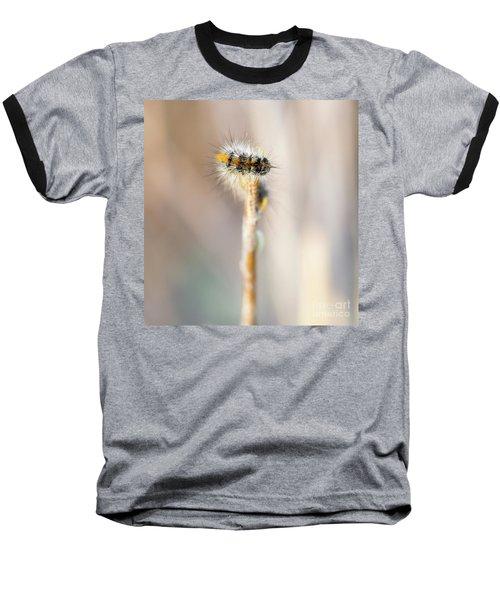 Caterpillar On The Stick Baseball T-Shirt by Gurgen Bakhshetsyan